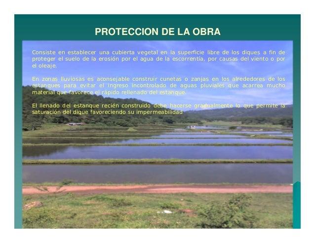 Construccion de estanques de tierra c for Cubierta estanque