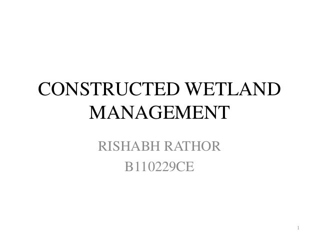 CONSTRUCTED WETLAND  MANAGEMENT  RISHABH RATHOR  B110229CE  1