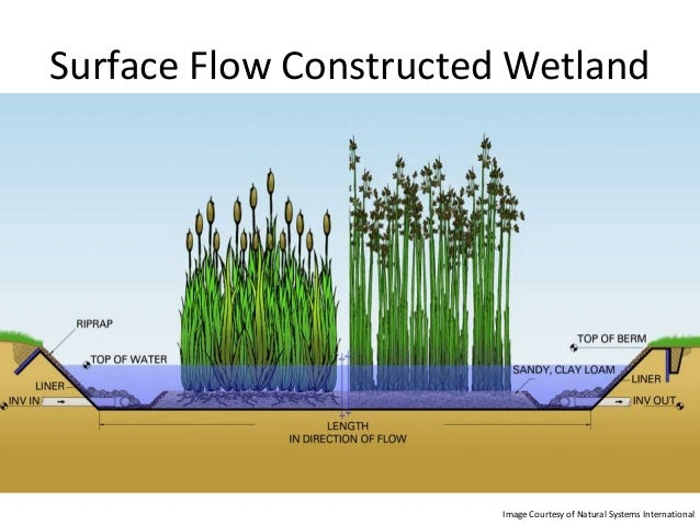 Constructed Wetlands Summary Code Innovation Feb 2013
