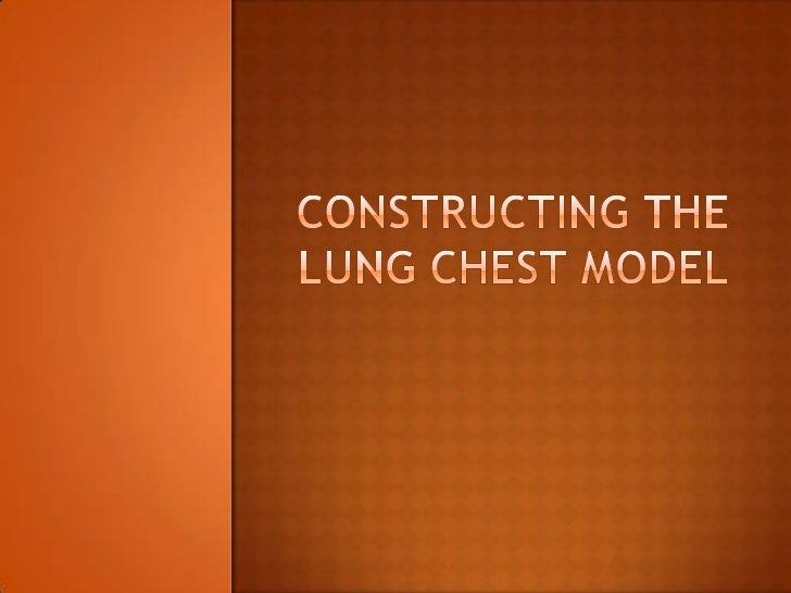 Constructing the lung chest model
