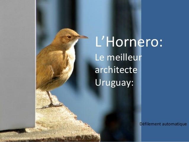 L'Hornero:Le meilleurarchitecteUruguay:Défilement automatique
