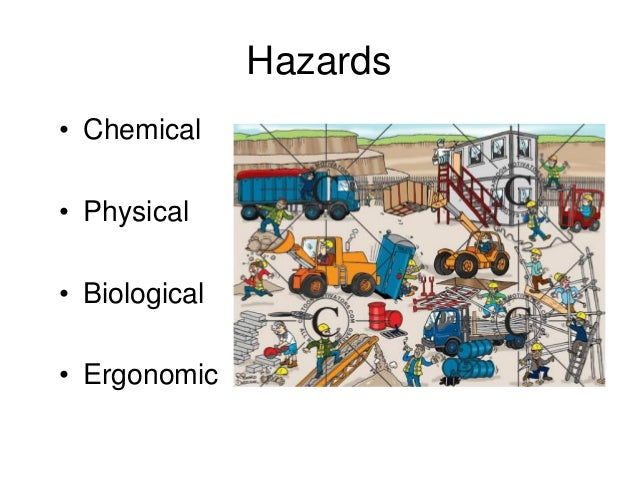 hazardous chemicals essay