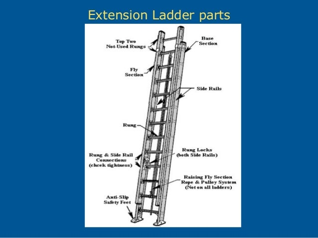 ladder safety in construction rh slideshare net Extension Ladder Rung Lock Parts Firefighter Ladder Parts Diagram