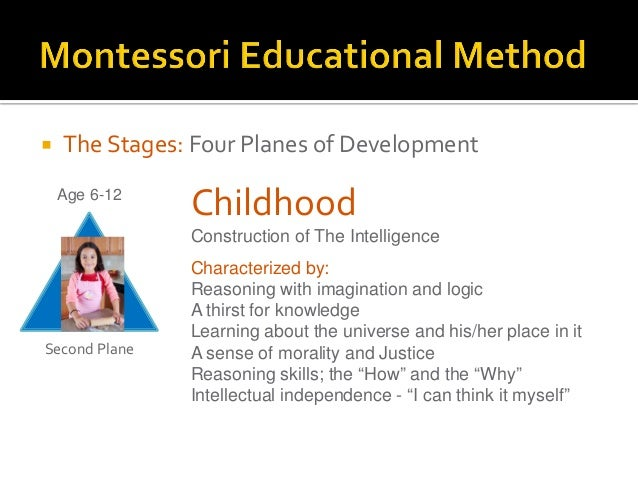 the planes of development Montessori terminology planes of development - four distinct periods of growth, development, and learning that build on each other as children and youth progress through them: ages 0 - 6.