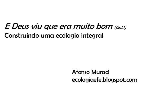 E Deus viu que era muito bom (Gn1,1) Construindo uma ecologia integral Afonso Murad ecologiaefe.blogspot.com