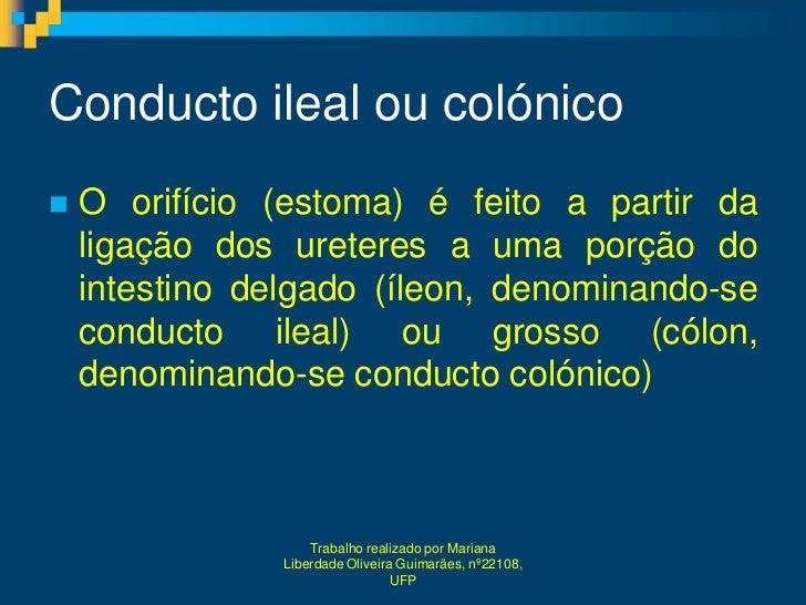 Conducto ileal ou colónico   O orifício (estoma) é feito a partir da    ligação dos ureteres a uma porção do    intestino...