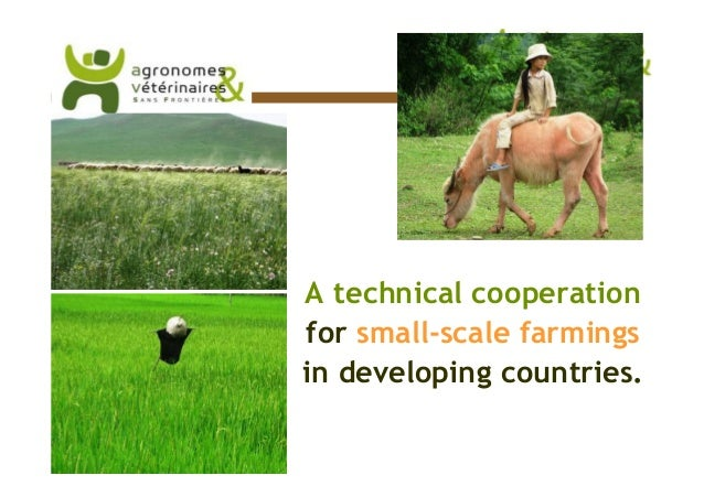 A technical cooperation                                                 for small-scale farmings                          ...