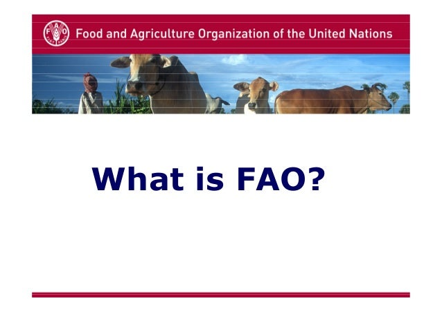What is FAO?