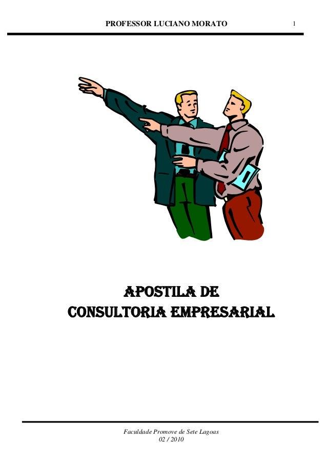 PROFESSOR LUCIANO MORATO Faculdade Promove de Sete Lagoas 02 / 2010 1 APOSTILA DE CONSULTORIA EMPRESARIAL
