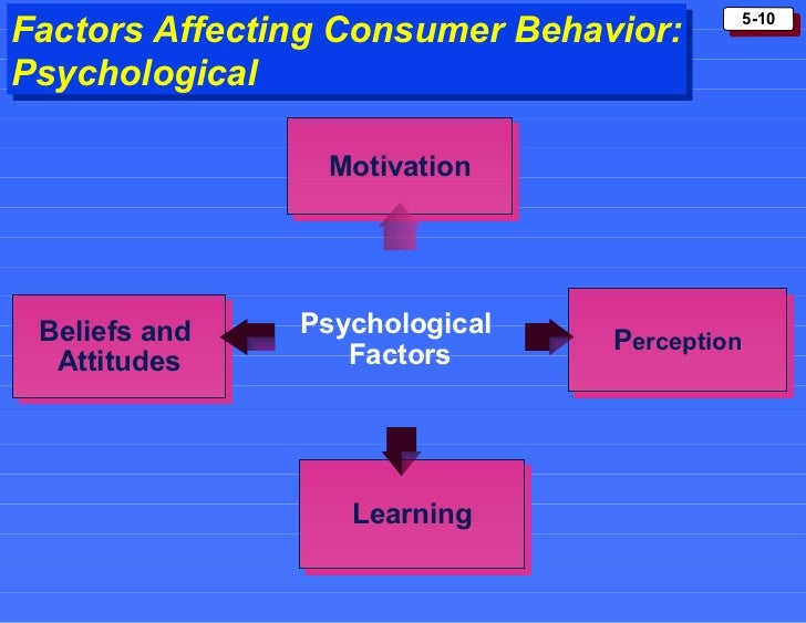 motivation in consumer behavior Evaluating consumer behaviour theory and the influences of ethical issues on  consumer motivation and choice relating to bristol zoo and longleat zoological.