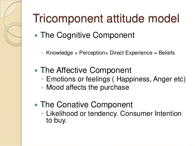 Tricomponent attitude model  The Cognitive Component ◦ Knowledge + Perception+ Direct Experience = Beliefs  The Affectiv...