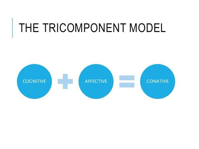 THE TRICOMPONENT MODEL COGNITIVE AFFECTIVE CONATIVE