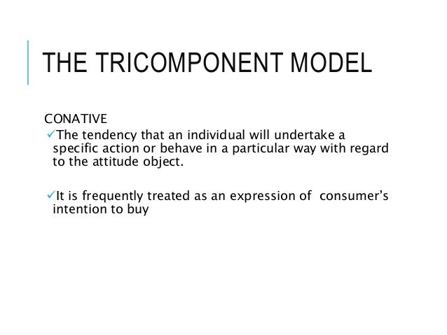 THE TRICOMPONENT MODEL CONATIVE The tendency that an individual will undertake a specific action or behave in a particula...