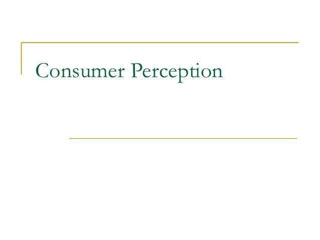Consumer Perception Theory