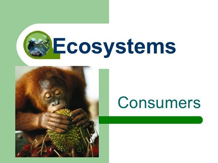 Consumers Ecosystems