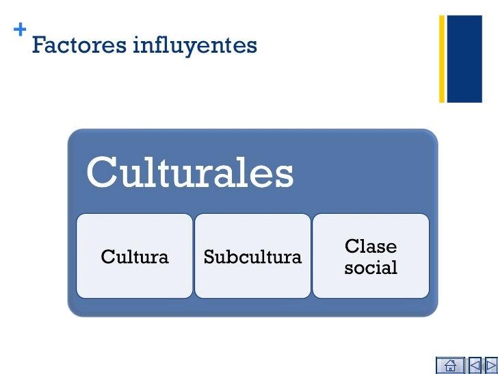 Factores influyentes +