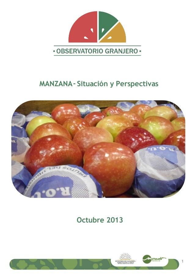 MANZANA- Situación y Perspectivas Octubre 2013 1