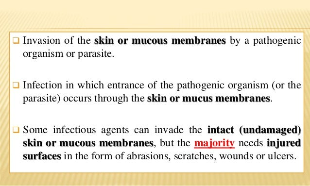 Contact infections Slide 2