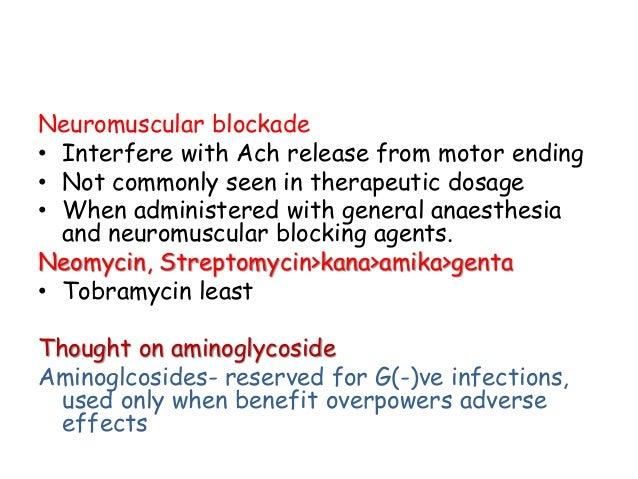 Amikacin Dog Ear Infection