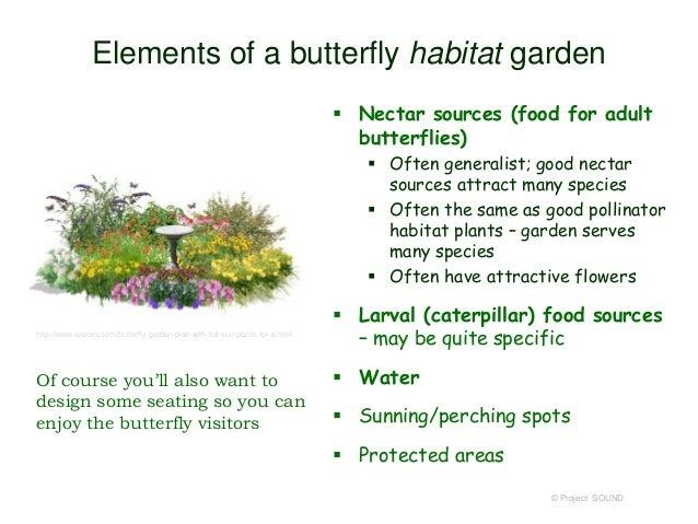 ... 16. Elements Of A Butterfly Habitat Garden ...