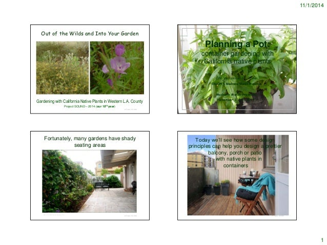 11/1/2014  1  © Project SOUND  Out of the Wilds and Into Your Garden  Gardening with California Native Plants in Western L...