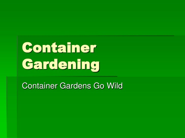 ContainerGardeningContainer Gardens Go Wild