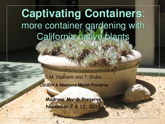 © Project SOUND Captivating Containers: more container gardening with California native plants C.M. Vadheim and T. Drake C...