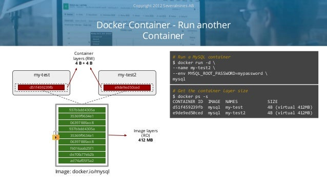 MySQL on Docker - Containerizing the Dolphin
