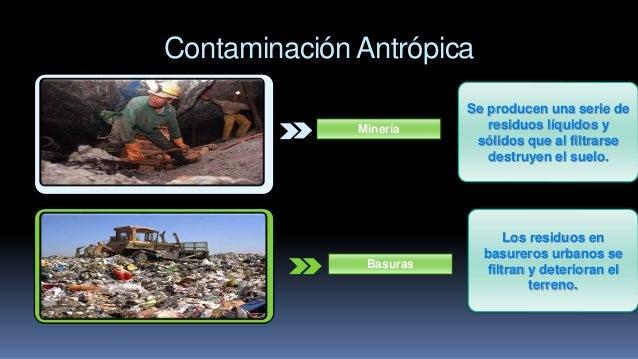 Contaminaci n del suelo for Tipo de suelo 1