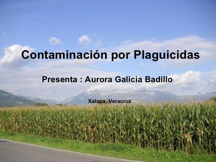 Contaminación por Plaguicidas Presenta : Aurora Galicia Badillo   Xalapa, Veracruz