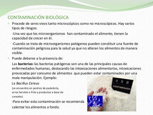 Contaminaci n alimentaria - Fuentes de contaminacion de los alimentos ...