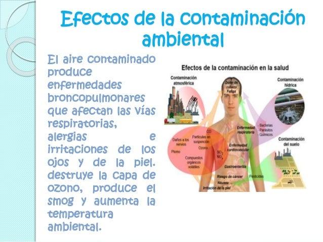 Contaminaci n ambiental for Como purificar el aire contaminado