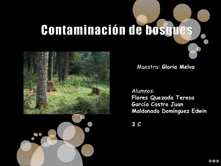 Contaminación de bosques<br />Maestra: Gloria Melva<br />Alumnos: <br />Flores Quezada Teresa<br />García Castro Juan<br /...