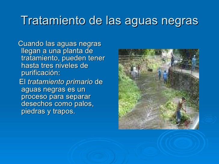 Tratamiento de las aguas negras <ul><li>Cuando las aguas negras llegan a una planta de tratamiento, pueden tener hasta tre...