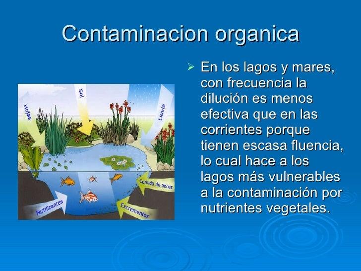 Contaminacion organica <ul><li>En los lagos y mares, con frecuencia la dilución es menos efectiva que en las corrientes po...