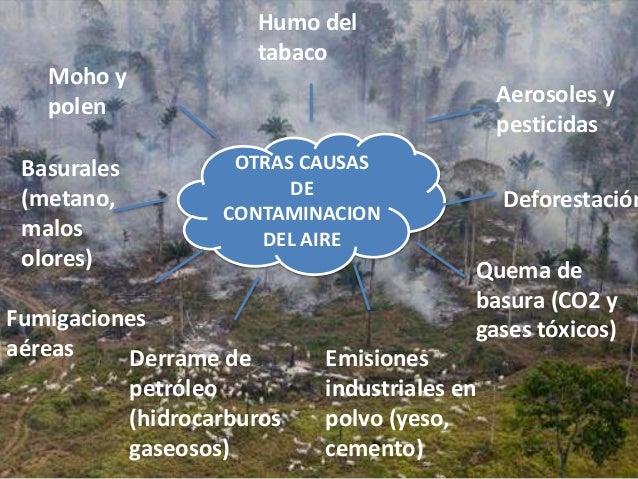 Contaminantes primarios del aire yahoo dating 1
