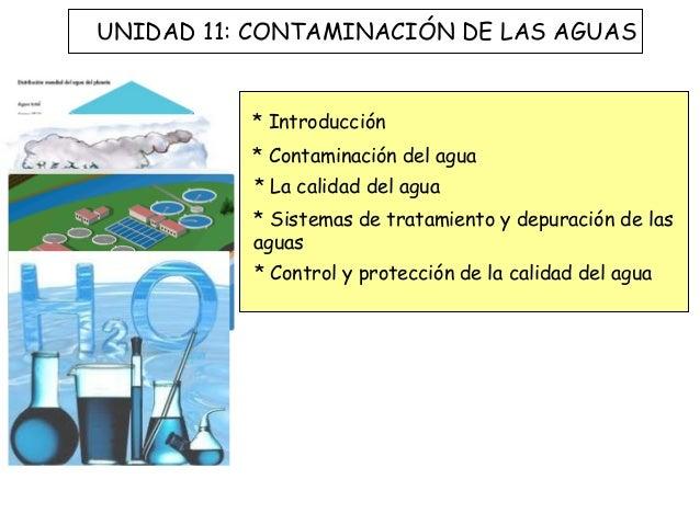 UNIDAD 11: CONTAMINACIÓN DE LAS AGUAS          * Introducción          * Contaminación del agua          * La calidad del ...