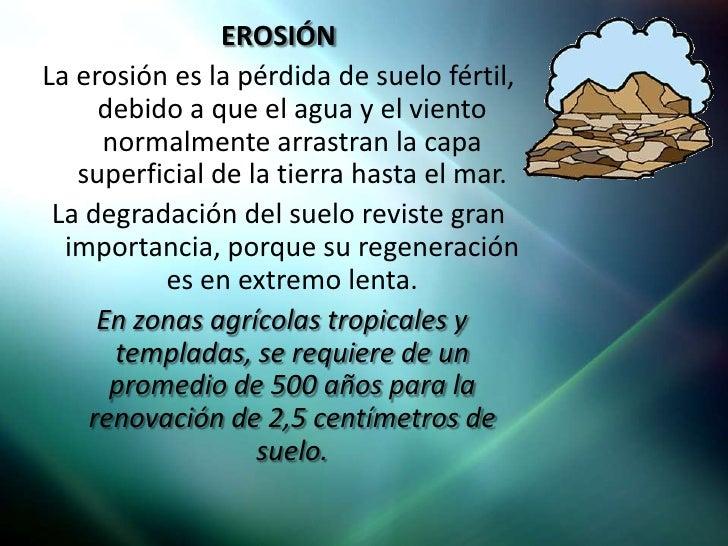 Contaminaci n del suelo for Importancia de los suelos