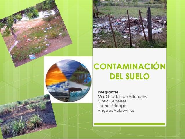 Contaminaci n del suelo for Como estan formados los suelos