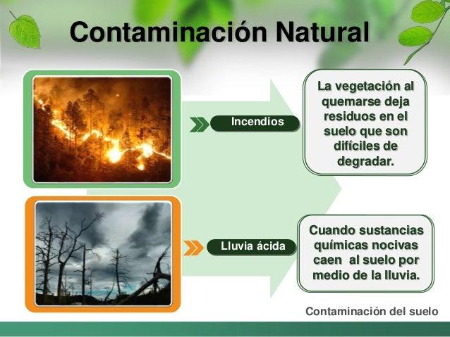 Contaminacion causada por el hombre for Que es la clausula suelo de los bancos
