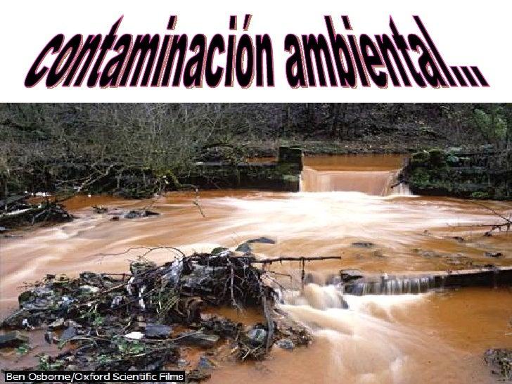 contaminación ambiental...