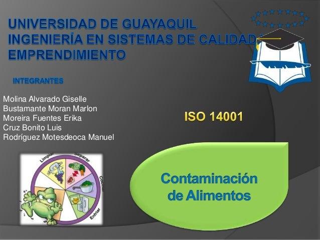 Contaminacion de alimentos - Fuentes de contaminacion de los alimentos ...