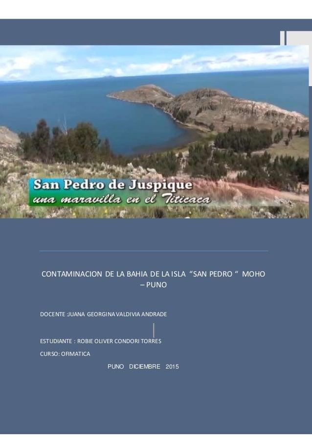"""CONTAMINACION DELA BAHIA DE LA ISLA """"SAN PEDRO"""" 1 CONDOROTORRES R. OLIVER CONTAMINACION DE LA BAHIA DE LA ISLA """"SAN PEDRO ..."""