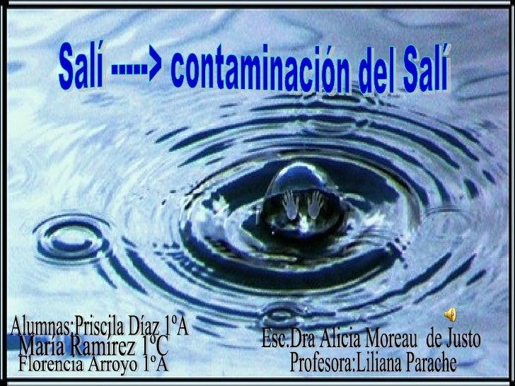 Salí -----> contaminación del Salí María Ramírez 1ºC Alumnas:Priscila Díaz 1ºA Florencia Arroyo 1ºA Profesora:Liliana Para...