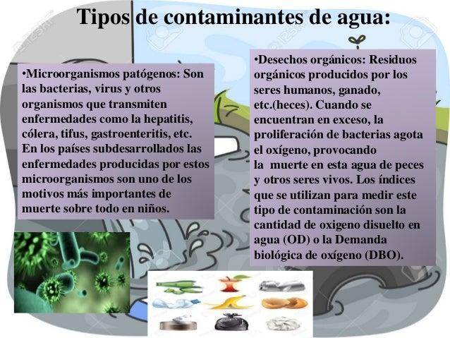 Contaminacion del agua y el aire for Peces de agua fria para consumo humano