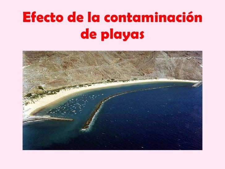 Efecto de la contaminación de playas