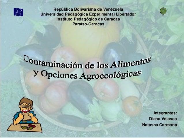 Integrantes: Diana Velasco Natasha Carmona República Bolivariana de Venezuela Universidad Pedagógica Experimental Libertad...