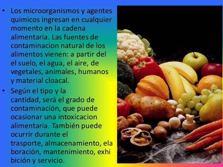 Contaminacion de los alimentos - Fuentes de contaminacion de los alimentos ...
