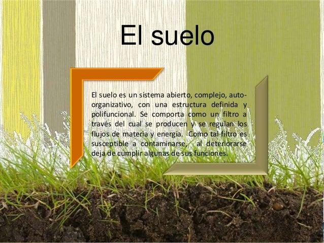 Contaminacion de los suelos for Suelo besar el suelo xd
