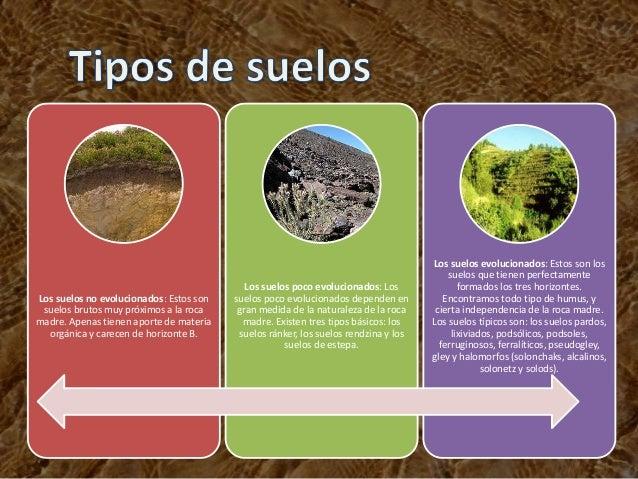 Contaminacion del suelo - Clases de suelo ...